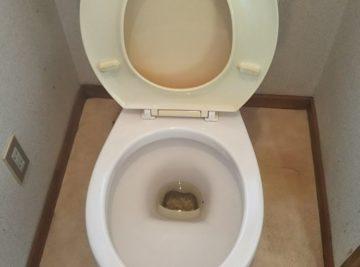 ゴミ屋敷片付け後のトイレ掃除