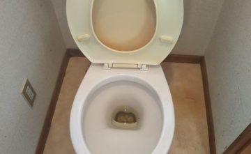 ゴミ屋敷後のトイレ掃除